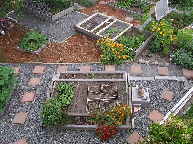 garden-509550_640
